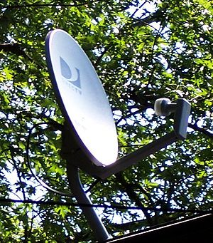 A standard DirecTV satellite dish with Dual LN...