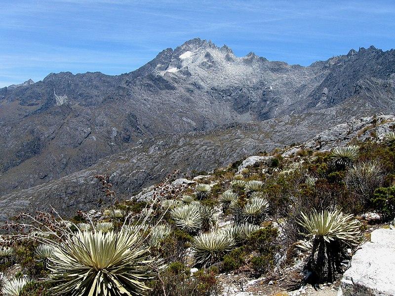 Archivo:Pico bolivar2.jpg