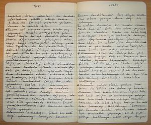 Notes in a Moleskine notebook