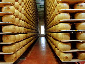 A factory of Parmigiano-Reggiano. There are tw...