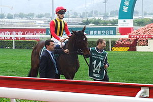 English: Sahpresa, a racehorse