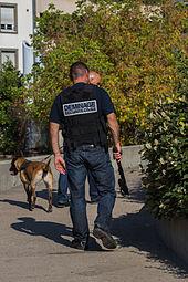 Scurit Civile En France Wikipdia