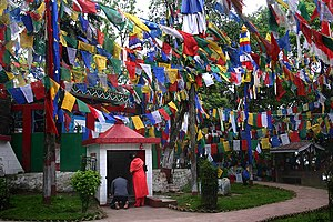 Flags containing Buddhism texts to ward off ev...