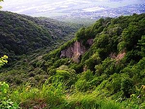 Georgian mountain.