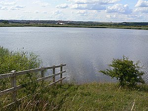 The Slurry Lagoon - geograph.org.uk - 1389734