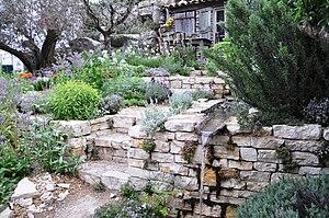 English: L'Occitane Garden, Chelsea Flower Sho...