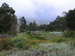 English: Santa Barbara Botanic Garden
