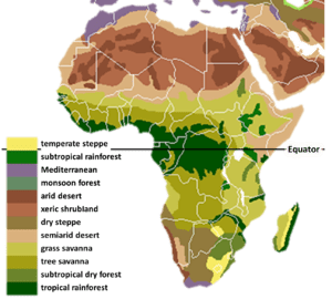 The main biomes in Africa. Drawn by hand using...
