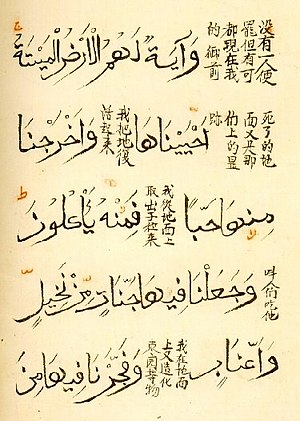 Quran with Chinese translation recorded in bot...