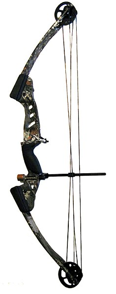 Typical compound bow