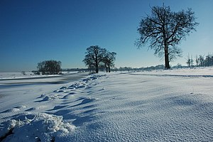 English: Winter wonderland in Croome Park Afte...