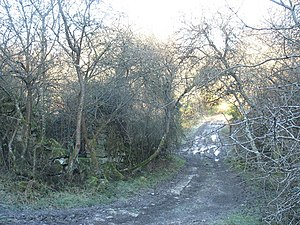 A frozen, muddy, track near Oerddwr cottage