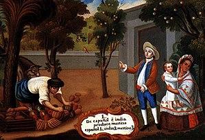 De español e india, produce mestizo (From a Sp...