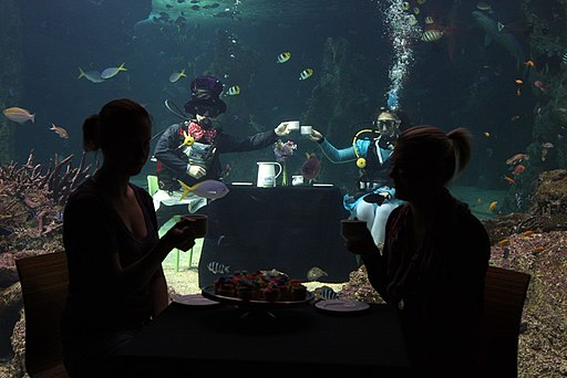 Sydney Aquarium Mad Hatters Tea Party (7238145586)