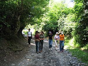 Walking in Shilda