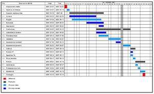 Example of a Gantt chart (Italian)