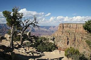 Grand Canyon Moran Point 2006 09 08