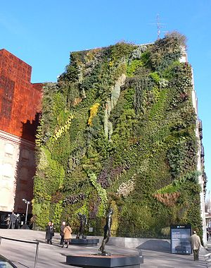Wall of living plants near Atocha station Madrid