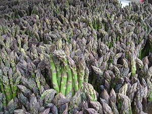 Deutsch: Grünspargel English: Green asparagus ...