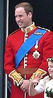 Prince William on the Balcony at Buckingham Pa...