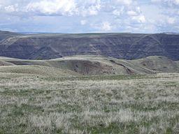 Ejemplo de pradera similar a las del Mioceno