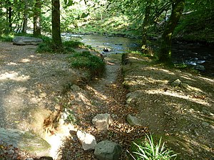 English: Exmoor : Dry Stream & River Barle
