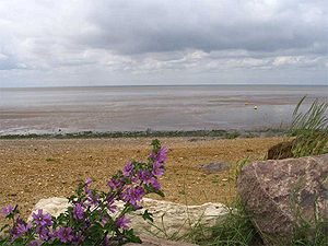 The Wash, as seen looking west from Heacham, i...