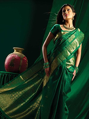 Indian Saree dress