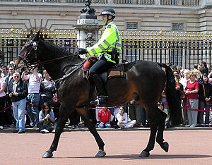Mounted officer of the British Metropolitan Po...