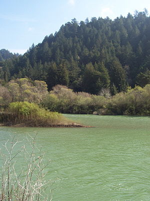 The Russian River which flows through several ...