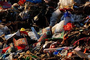 Garbage, Beijing