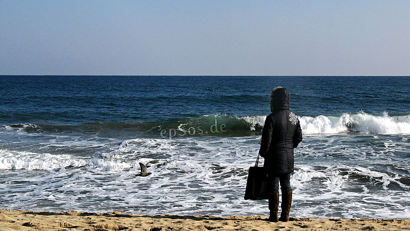 File:Lonely Woman Watching Sea Waves on Beach.jpg