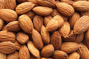 Shelled almonds on doctorfoodtruth