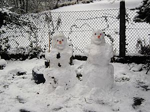snowwoman left and snowman right
