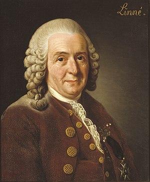 Carl von Linné, Alexander Roslin, 1775.