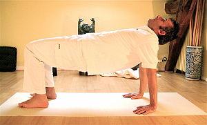 Yoga postures Catushpadapitham