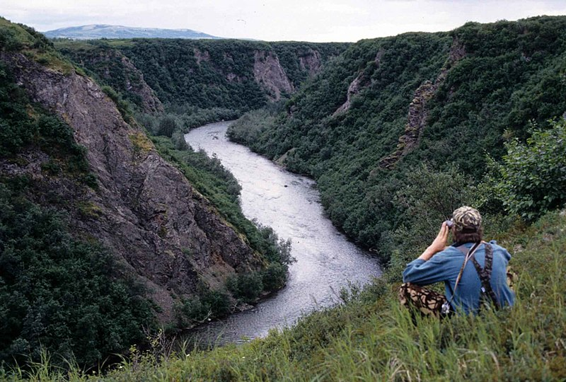 File:Man sitting on high hill and watching river down.jpg