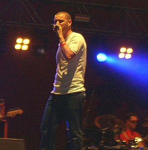Mike Skinner in concert