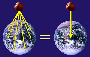 An apple experiences gravitational fields dire...