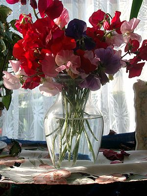 Cut flowers in a vase