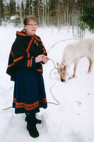 File:Sami woman with white reindeer.jpg