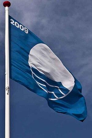 The Blue Flag, environment, 2009
