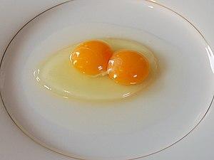 a Chicken egg, Binovular