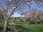 Heather Farm Park - Walnut Creek, California.jpg