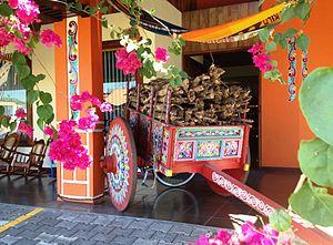 Costa Rica Pura Vida On Pantone Canvas Gallery