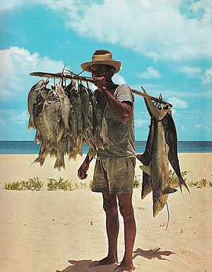 Fisherman and his catch, Seychelles. The fishe...