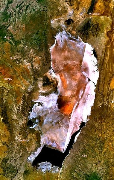 https://i2.wp.com/upload.wikimedia.org/wikipedia/commons/thumb/6/6d/Lake_Natron_satellite.JPG/381px-Lake_Natron_satellite.JPG