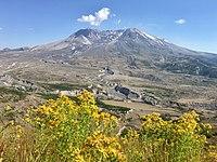 Mt St Helens NVM luglio 2018.jpg
