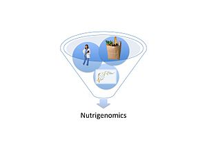 Nutrigenomics flow chart: research, Food, Gene...