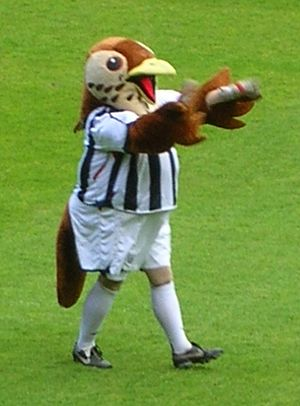 Baggie Bird, the West Bromwich Albion F.C. mascot